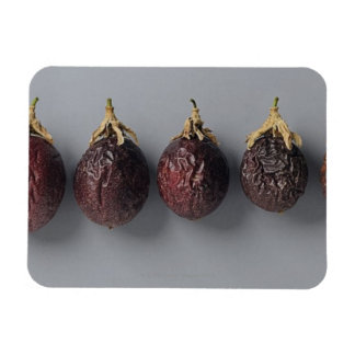 Passion fruit aging magnet