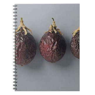 Passion fruit aging spiral notebook