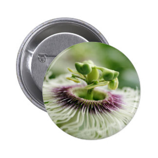 Passion fruit bloom pin