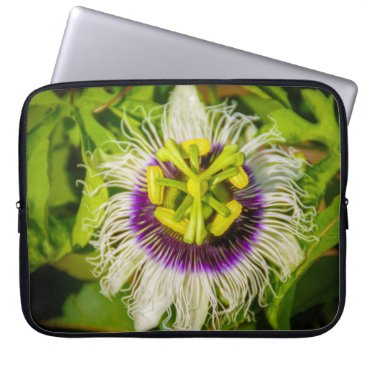 Beach Themed Passion Fruit Flower, Anaina Hou Gardens Wetsuit Laptop Sleeve