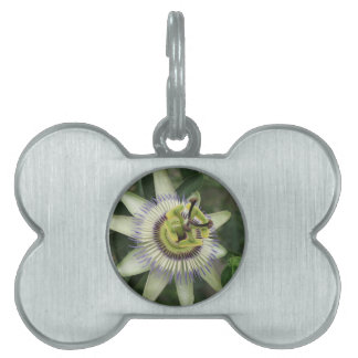Passion Fruit Flower Pet ID Tag
