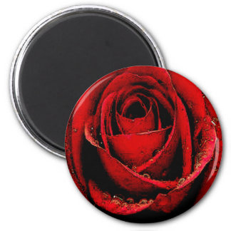 Passion Of The Rose Magnet