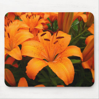 Passion - Orange Lilies Mousepad