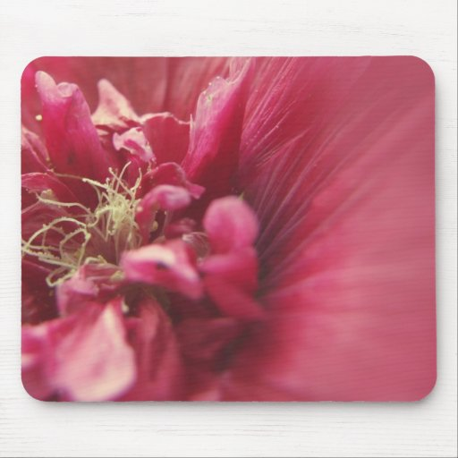 Passion Red Flower Mousepad