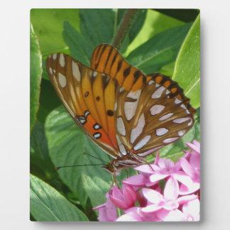 Passion Vine Butterfly Plaque