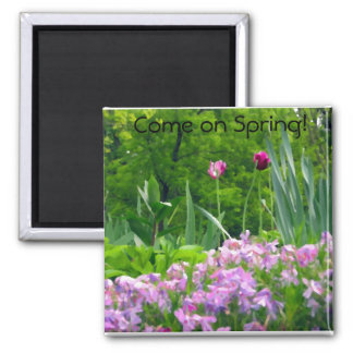 Passionate Purple Tulips Magnet