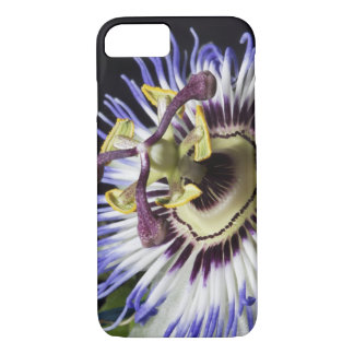 Passionflower close-up (MR) iPhone 8/7 Case