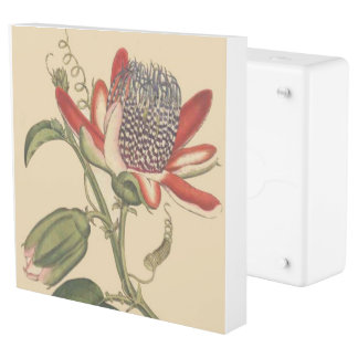Passionflower Flowers Floral Inlet Outlet Cover