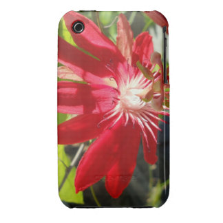 Passionflower   (passifloria) Case-Mate iPhone 3 protector