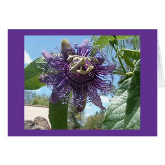 passionflower tarjeta de felicitación