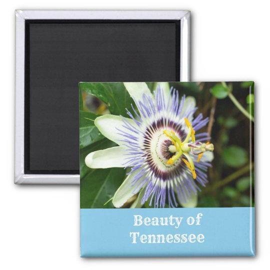 Passionflower Tennessee State Flower Magnet