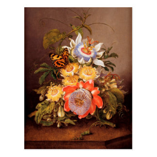 Passionflowers el   Fernando Bauer Postal