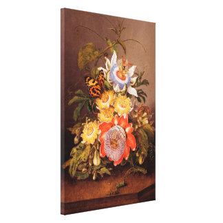 Passionflowers | Ferdinand Bauer Canvas Print
