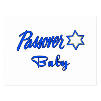 Passover Baby Blue Postcard