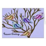Passover birds Card