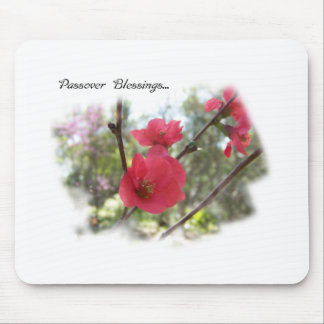 Passover Blessings Lovely Blossoms Mouse Pad