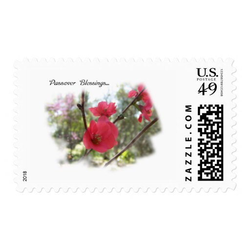 Passover Blessings Stamp