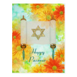 Passover Greetings Post Cards
