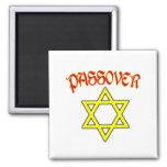 Passover Red, Black & Gold Fridge Magnet
