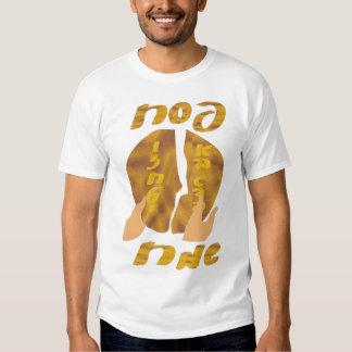 Passover Sameach Shirt