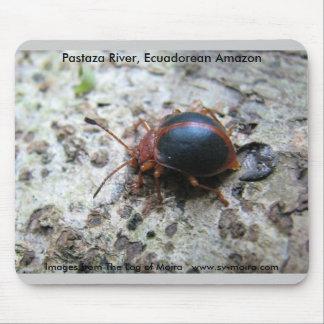 Pastaza River, Ecuadorean Amazon Mouse Pad
