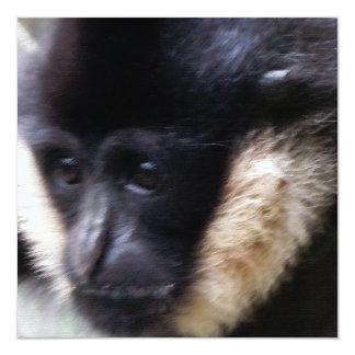 Pastel blanco del Gibbon de Cheeked Invitación 13,3 Cm X 13,3cm