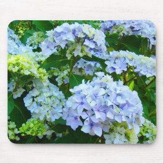 Pastel Blue Hydrangea Flowers Garden mousepad