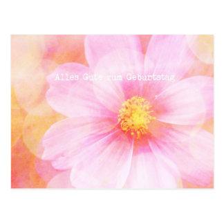 Pastel Daisy Alles Gutes zum Geburtstag Postcard