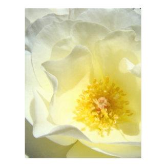 Pastel de papel del amarillo de la flor del rosa b plantillas de membrete
