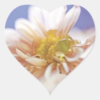 Pastel Flower and Water Drop Photograph Heart Sticker