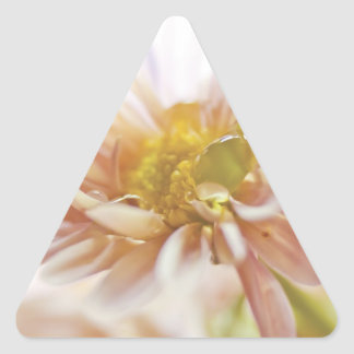 Pastel Flower and Water Drop Photograph Triangle Sticker