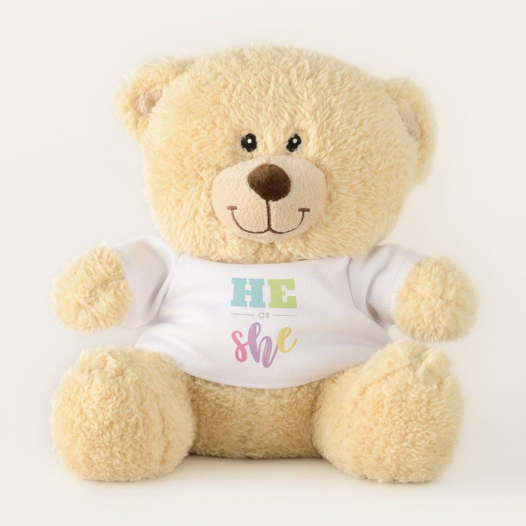 Pastel He or She Gender Reveal Baby Shower Teddy Bear