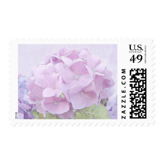 Pastel Hydrangea Flowers Postage