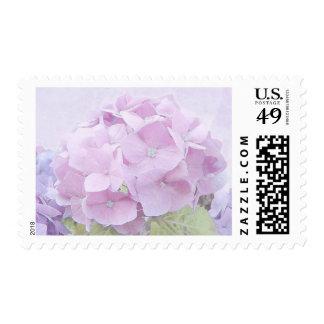 Pastel Hydrangea Flowers Postage Stamp