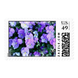 Pastel Johnny Jump Ups Postage Stamp