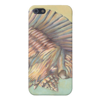 Pastel Large Conch Shell iPhone 5/5S Cases