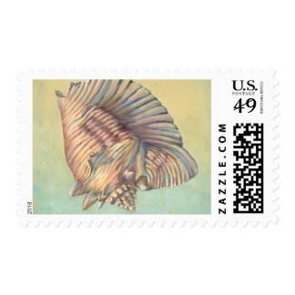 Pastel Large Conch Shell Postage