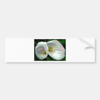Pastel lilies car bumper sticker