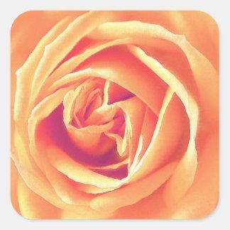 Pastel orange rose print square sticker