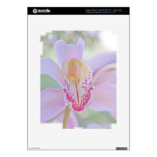 Pastel Orchid iPad 3 Decals