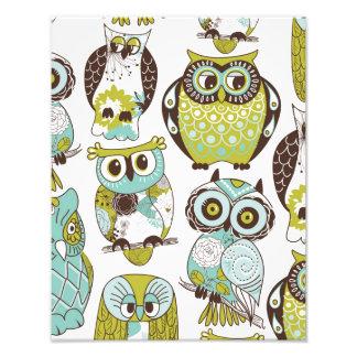 Pastel Owl Pattern Photograph