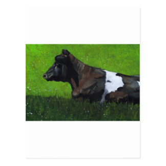 Pastel Painting of Holstein Cow in Sunshine Postcard