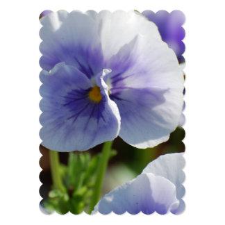 "Pastel Pansies 5"" X 7"" Invitation Card"