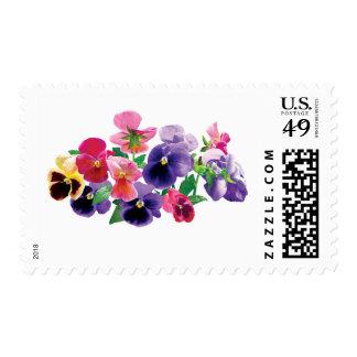 Pastel Pansies Postage Stamps