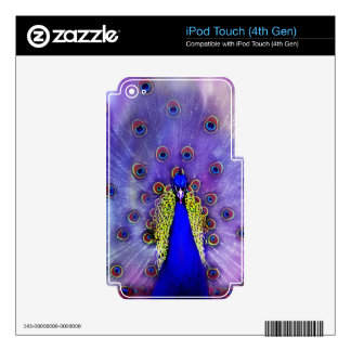 Pastel Peacock iPod Touch 4G Decals