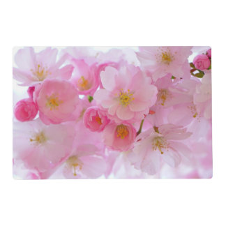 Pastel Pink Cherry Blossoms Placemat