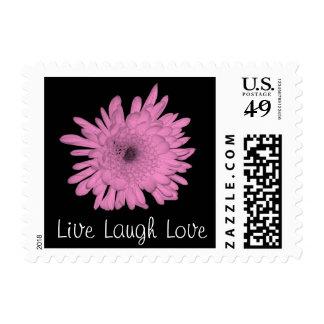 Pastel Pink Chrysanthemum Postage Stamp
