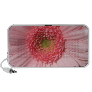 Pastel Pink Daisy  Portable Speakers