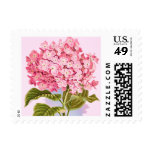 Pastel Pink Hydrangea Flower Size Small Stamps