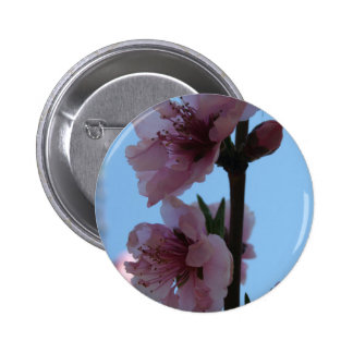 Pastel Pink of Peach Tree Blossom Pinback Button
